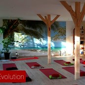 Yogalehrer - Yoga Evolution Evelin Ball