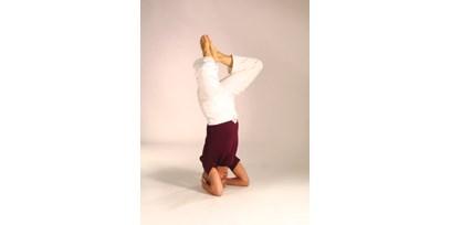 Yogaausbildung In Rheinland Pfalz Yogastudio Abwechslung In Die Yoga Vidya Grundreihe Bringen Yogalehrer Weiterbildung
